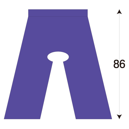検査用パンツ(ディスポ検査衣)穴アキ IP-150(86cm) 100枚  使い捨て【05P05Dec15】