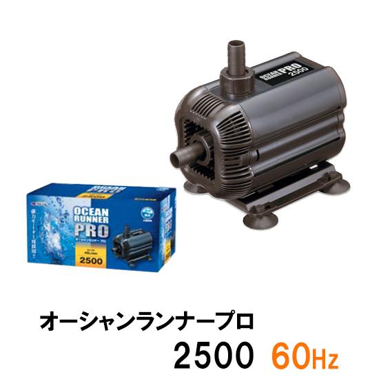 ♭ カミハタ オーシャンランナープロ2500 上品 60Hz 送料無料 一部地域を除く 西日本用 但 一部地域送料別途