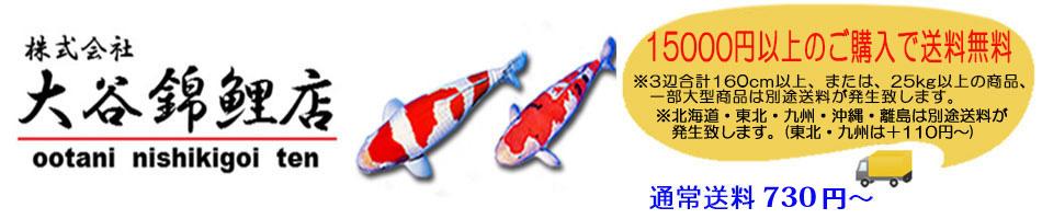 大谷錦鯉店:ニシキゴイの餌、ポンプ、水槽・濾過槽、水質調整剤、飼育用品の大谷錦鯉店
