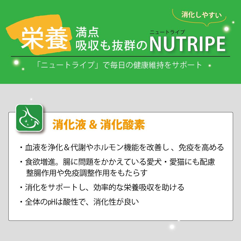 ニュートライプ ドッグフード ピュア グリーントライプ 185g×24缶セット【無添加 ナチュラル トライプ ウェットフード 缶詰】