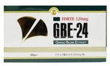 GBE-24 フォルテ イチョウ葉エキス食品 335mg*60粒