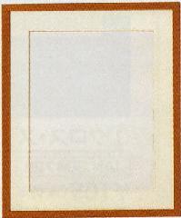 【オリムパスOLYMPUS】木製フレーム(額) W-13(白木)【取寄せ品】【C3-8】U-NG