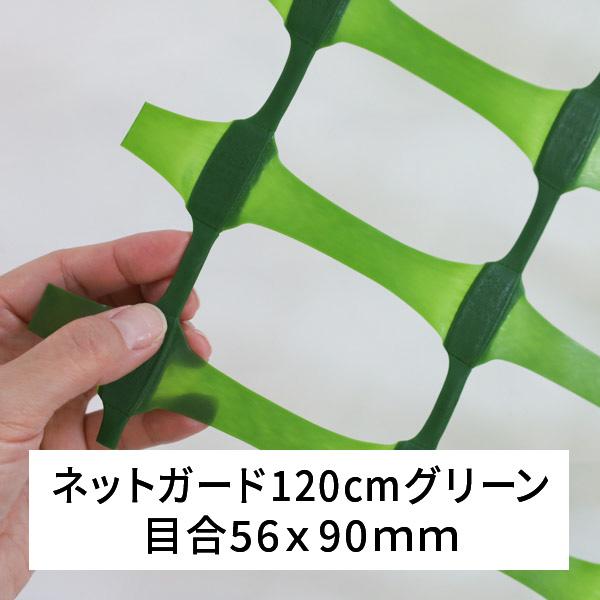 ネットガード 緑 巾120cm 50M巻 NGG-120 ダイプラ
