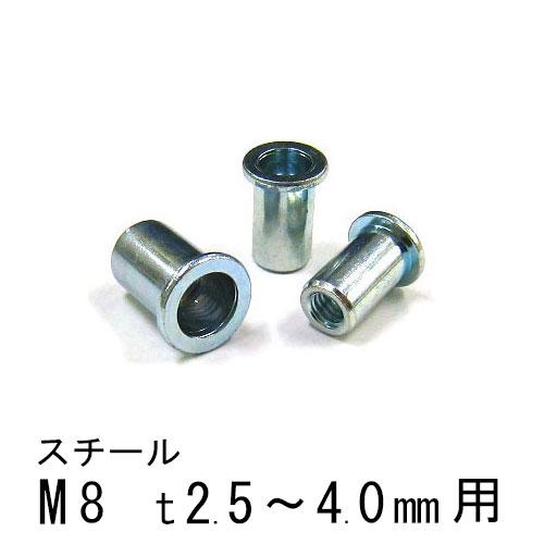 エビナット スチール Dタイプ M8 500個 NSD840M エビ