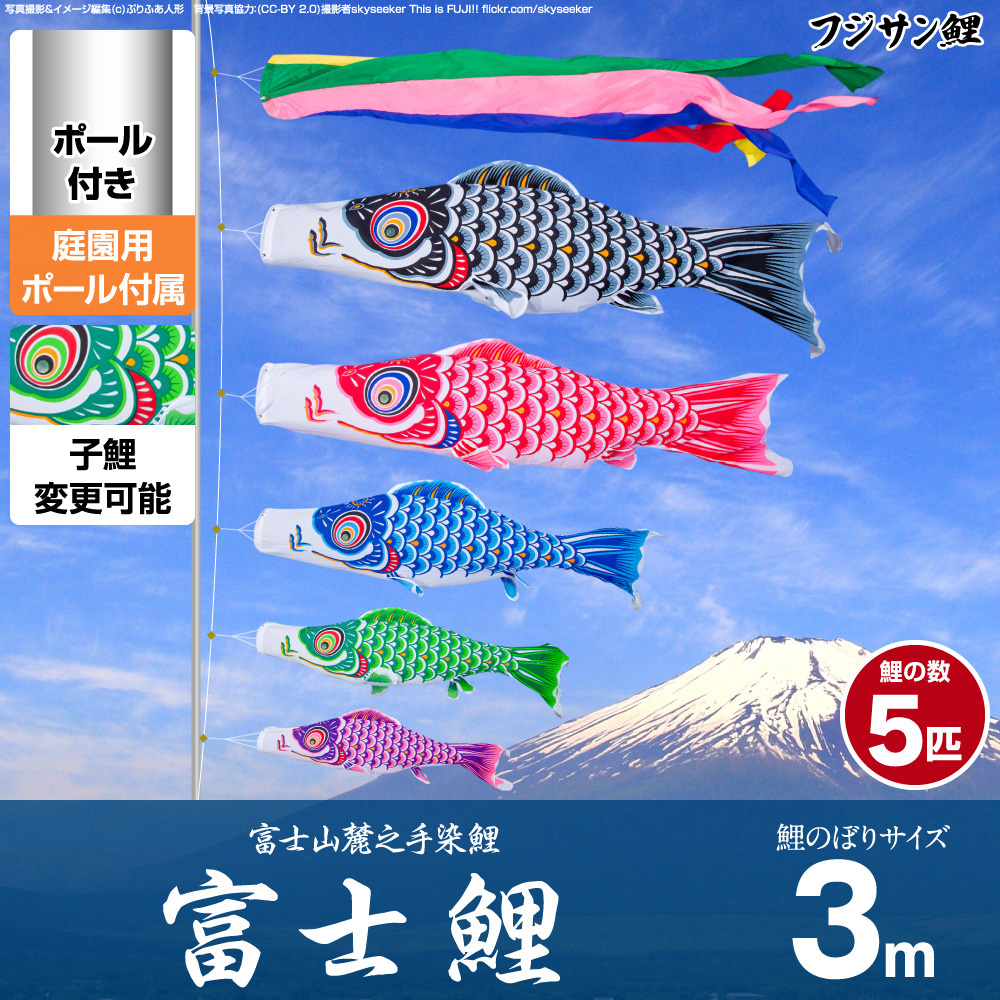 庭園用 こいのぼり 鯉のぼり フジサン鯉 富士鯉 3m 8点セット(吹流し+鯉5匹+矢車+ロープ) 庭園 ポール付属 ガーデンセット