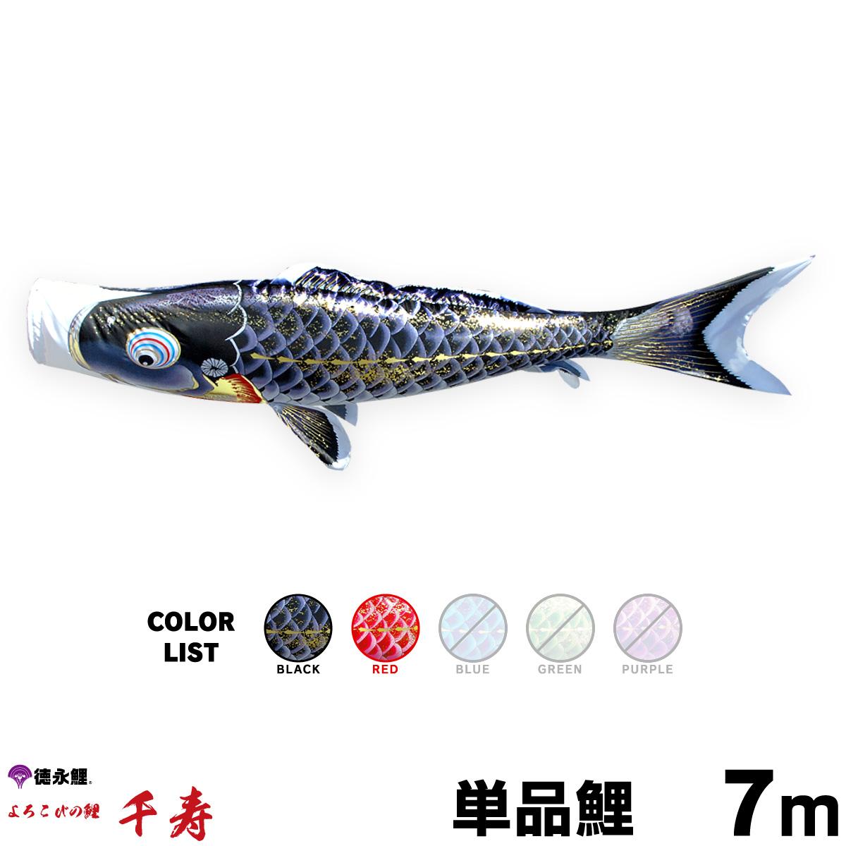 【こいのぼり 単品】 千寿 7m 単品鯉 黒 赤