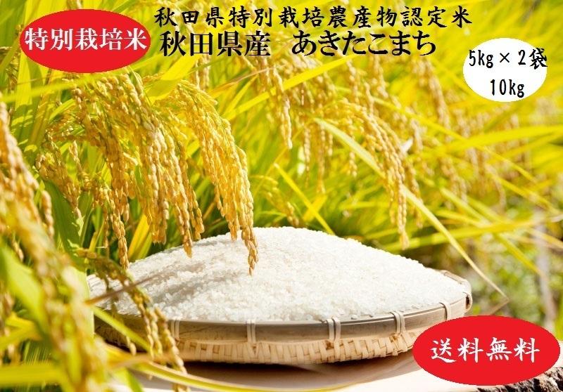 厳選されたおいしいお米をお届け致します 農薬最小限 特別栽培農法 土壌環境の良いお米だけをお届けします 記念日 秋田直送便 送料無料 沖縄 離島を除く 令和2年産売り尽くし 精米10kg特栽 新品■送料無料■ 令和2年産 あきたこまち 10kg プレゼント付き 秋田県特別栽培農産物認証米 安全なおいしいお米米びつ当番 天鷹唐辛子 白米 5kg×2袋グルメな方や安心 玄米 秋田県産