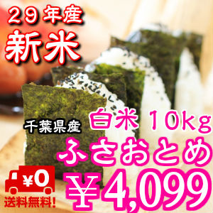 ♪ 26 年度 ♪ 千叶县生产流苏乙女最后 10 公斤 (5 公斤 x 2) * 区域有排斥 * 四国 400 日元,北海道和九州 ﹢ 日元