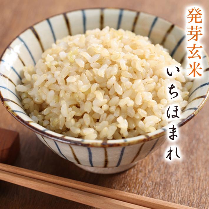 日本最大級の品揃え 発芽玄米 無農薬 米 玄米 2kg いちほまれ いちほまれ送料無料無農薬 今だけスーパーセール限定 GABAが豊富アブシジン酸は検出されませんでした フレッシュ真空パックでお届け米 食味鑑定士認定米 無化学肥料栽培無農薬いちほまれ令和2年福井県産食物繊維 限定米 ビタミンB群
