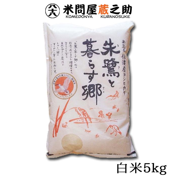 朱鷺と暮らす郷 特別栽培米 新潟県 佐渡産 こしひかり 白米 5kg 令和元年産 送料無料