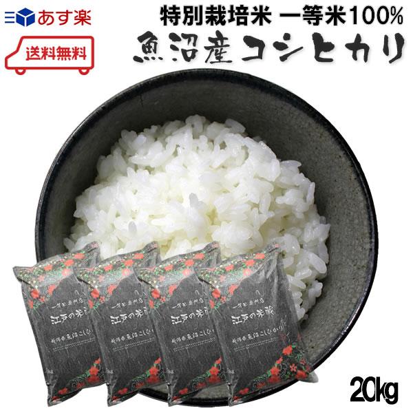 《 新米 超安い 一等米100%使用》 ≪送料無料≫特別栽培米 減農薬 人気 おすすめ 減化学肥料 令和1年産 新潟県魚沼産コシヒカリ5kg×4個 一等米