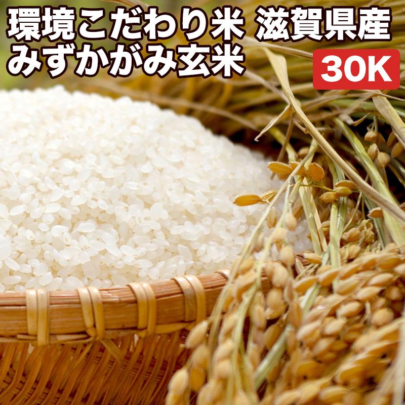 環境こだわり米滋賀県産みずかがみ玄米30Kお米【選べる搗き方 白米・ハイガ米・玄米・8分つきなど】完全真空包装米(真空包装代 無料)長期保存・鮮度維持・カビ、害虫などの繁殖 防止に♪美味しいご飯。贈り物にも。