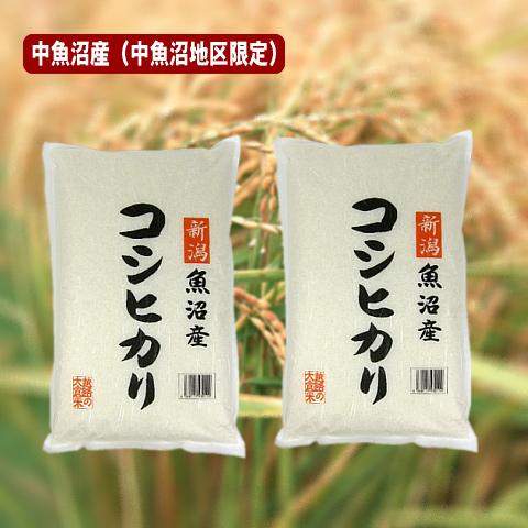 中魚沼産コシヒカリ(令和元年産) 10kg(十日町地区限定米)【送料無料(本州のみ】