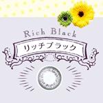 【120ポイント付】エルコンワンデーポップ リッチブラックどーんとお得な【120枚パック】