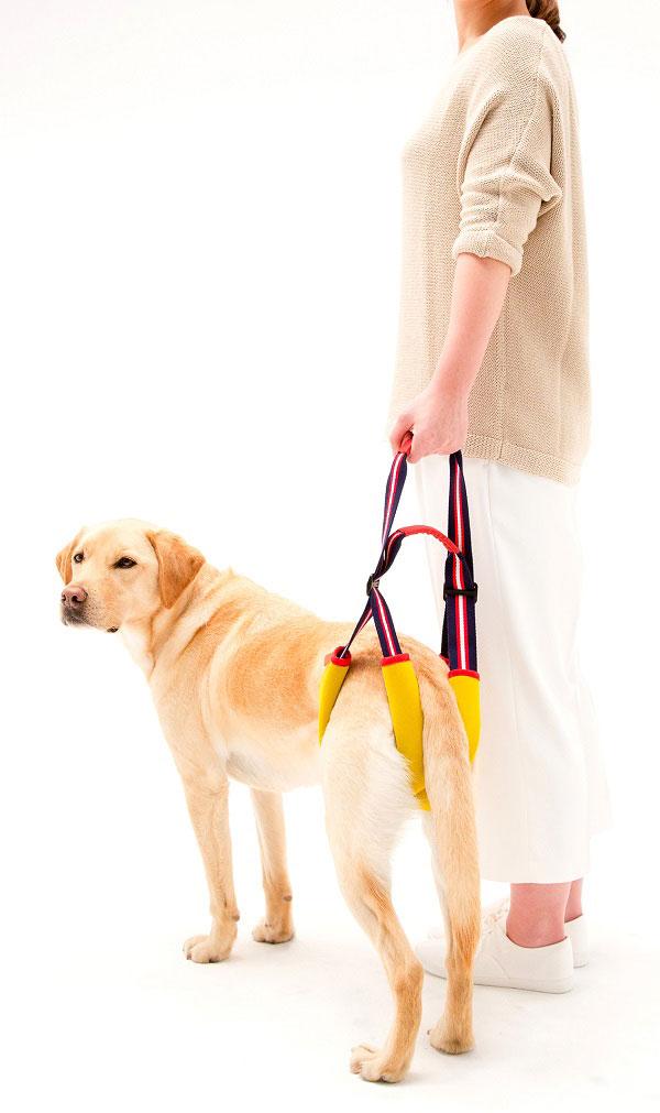 歩行補助ハーネスSTEP レモンスポーツ[中、大型犬用]/犬 ハーネス 介護 ペット 中型犬 大型犬 散歩 おでかけ