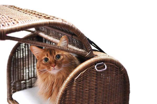 ラタンキャリーベッド/オールハンドメイド 天然素材ベッド キャットベッド キャット キャットハウス 籐 トウ ラタン ベッド ネコ 小型クッション おしゃれ かわいい キャリー
