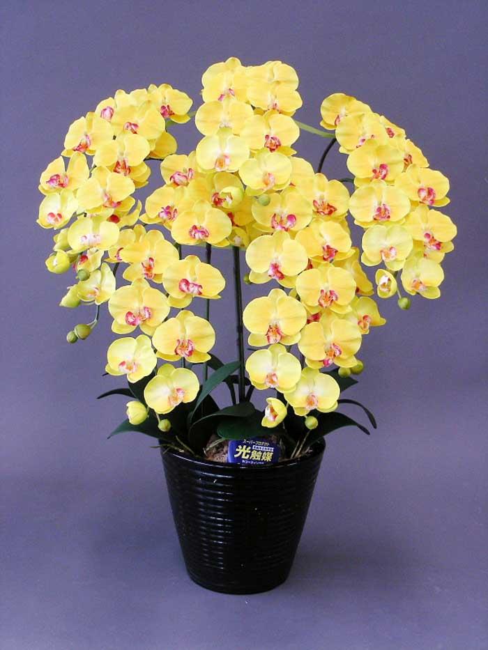 【本物のような造花】☆胡蝶蘭加工光触媒L5本立ち☆抗菌作用·消臭効果がある光触媒の造花でお部屋の空気を爽やかに·