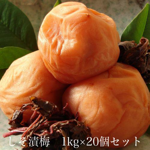 しそ漬梅1kg × 20個セット 【和歌山県産】 【10P03Aug09】