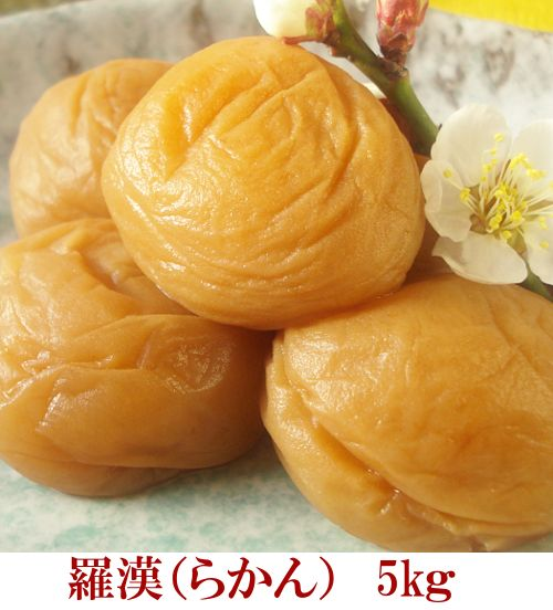 羅漢(らかん)5kg 【和歌山県産】