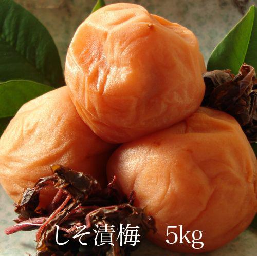 しそ漬梅5kg 【和歌山県産】