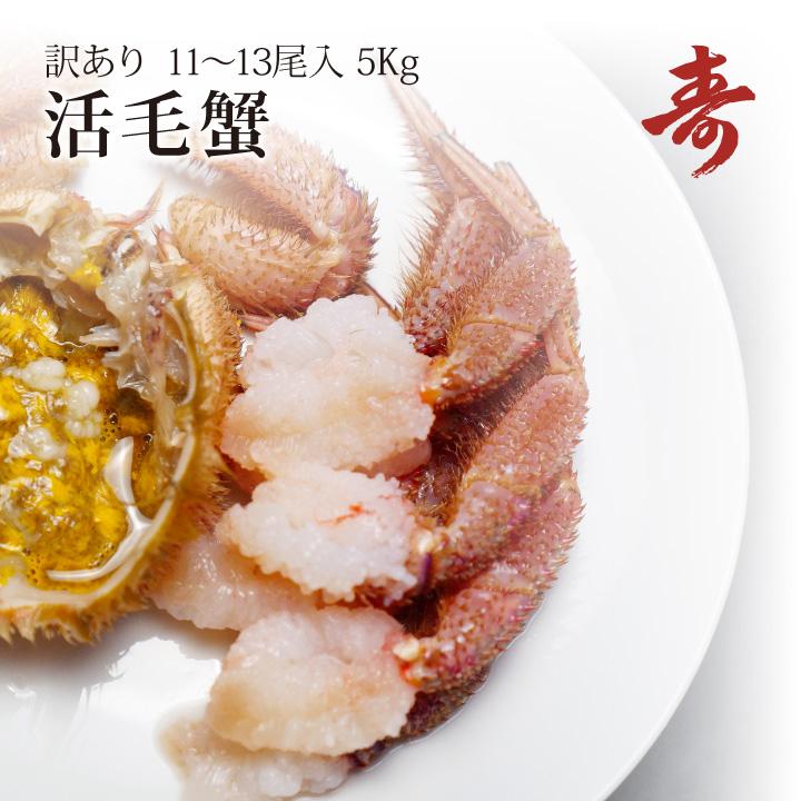 毛ガニ カニ 訳あり 5kg 前後 11~13尾 北海道産 冷蔵 毛がに 蟹 活蟹 刺し身