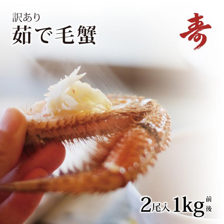 毛ガニ カニ ボイル 訳あり 500g 前後 2尾 北海道産 冷蔵 お試し 毛蟹 毛がに 蟹