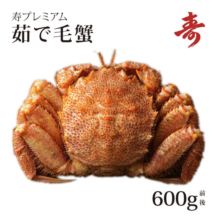 ギフト 毛ガニ カニ 特大 ボイル 600g 前後 北海道産 冷蔵 毛蟹 毛がに 蟹 お中元 お歳暮 内祝い お返し