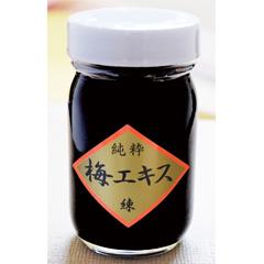 貴重な梅の有効成分が凝縮。塩分無添加 練状 梅エキス 95g【和歌山県産】