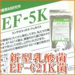 【☆】新型乳酸菌EF-621K菌【EF-5K】細粒 30包×5袋セット(エンテロコッカス・フェカリス菌)【プラス機能性乳酸菌30包を1個おまけつき】【EF5K】