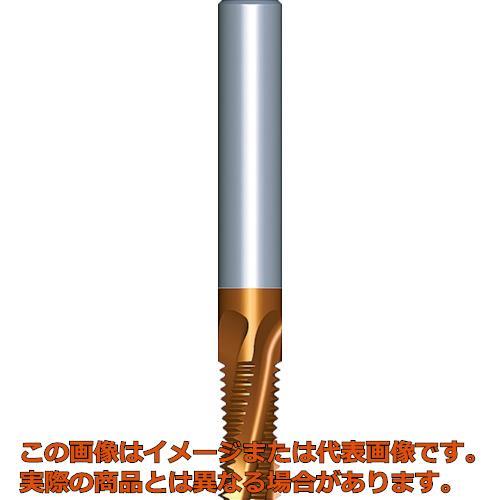 NOGA 超硬ソリッドミルスレッドISO 06038C100.5ISOMT7
