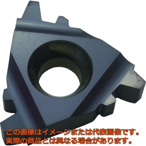 NOGA Carmexねじ切り用チップ TRAPEZ/台形ねじ用 チップサイズ16×P2.0×30° 16IR2TRBMA 10個