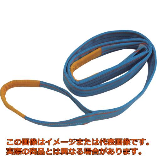 TESAC ブルースリング(JIS3等級・両端アイ形)荷重2.5t 全長5.0m 3E75X5
