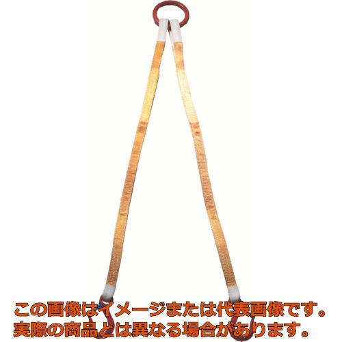 大洋 2本吊 インカリフティングスリング 2t用×2m 2ILS2TX2