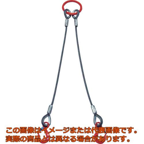 大洋 2本吊 ワイヤスリング 1t用×1m 2WRS1TX1