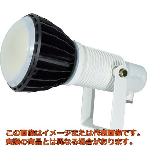 日動 LED安全投光器100W 常設型 ワイド 本体白 ATLE100WW50K