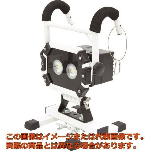 日動 充電式LED 着脱式ハンガーチャージライトスポット 20W BATHRE20SSP