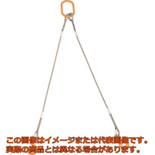 TRUSCO 2本吊りWスリング フック付き 12mmX2m GRE2P12S2