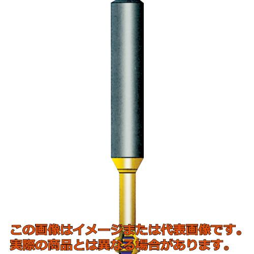 NOGA Carmex超硬ソリッドミニミルスレッド シャンク径6×M2.5×0.45×首下5.5 M0602C50.45ISO