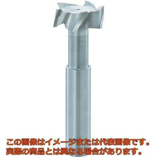 FKD Tスロットエンドミル22×8 TSE22X8