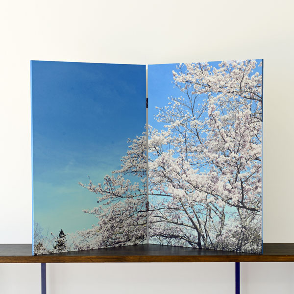 Byoubu T820 sakura 木製和風屏風 No.8 桜 2連サイズ 約55cm×高さ82cm×2連【日本製】