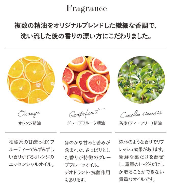 [マラソン全品2倍]オーガニック 食器用洗剤 台所洗剤 日本製 食器洗い 台所用せっけん 手に優しくて可愛いボトル入り 480ml プランタオーガニック プレミアムキッチンソープ