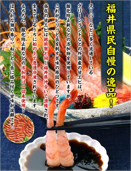 日本海船上急速凍結の一級品!子持ち越前甘えび特大サイズ500g(30尾前後)!【エビ】【えび】【あまえび】【アマエビ】【甘エビ】