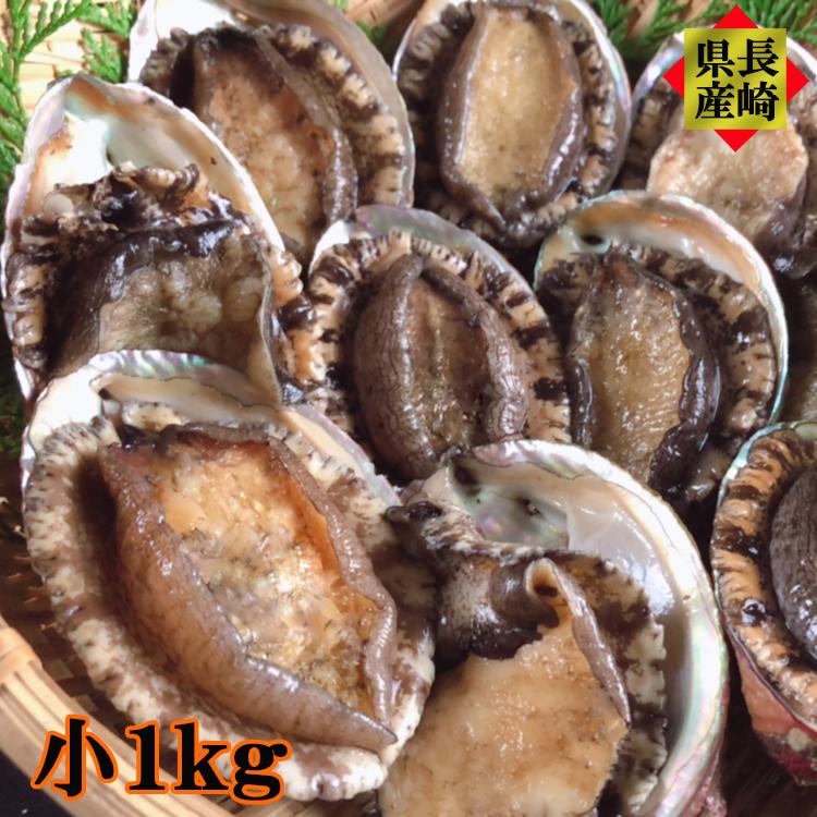長崎県産 天然アワビ 小 1kg以上 お刺身 炊き込みご飯 ステーキ 海鮮 ギフト