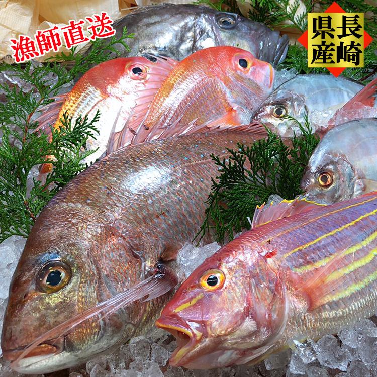 海鮮 ギフト セット 長崎県産 プレミアム鮮魚セット 新鮮・お刺身・煮つけ・フライ