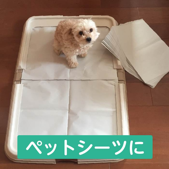 ★To pet small animal birds! ★ It is usable on materials pet sheet with paper wide flooring nest materials floor in blank paper newsprint watches of the night! It is usable as a newspaper old newspaper insole packing materials buffer material! Corresponde