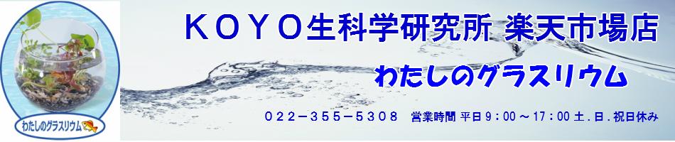 KOYO生科学研究所 楽天市場店:グラスリウムを販売しています