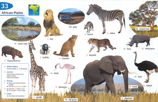 【楽天市場】Longman Children's Picture Dictionary with CDs: With ...
