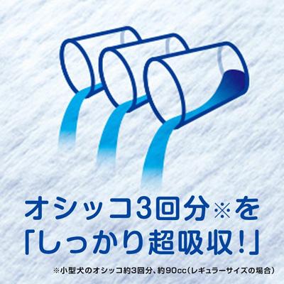 デオシート しっかり超吸収 無香消臭タイプ ワイド(36枚入)