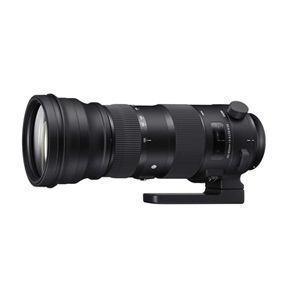 【納期約1ヶ月以上】◎SIGMA シグマ F5-6.3 DG OS HSM(Nikon ニコン) 150-600mm