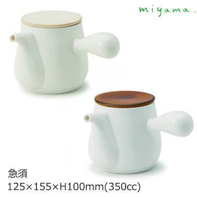 小茶壶bico(二,共)深山陶器W125×D155×H100mm(350ml)